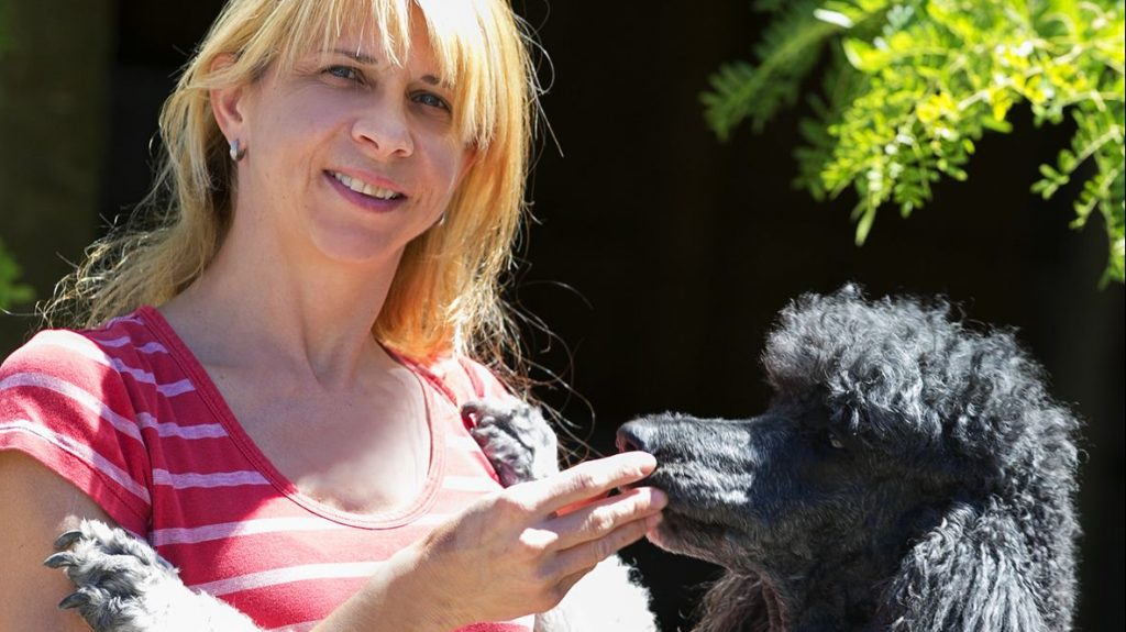 Claudia Pregartner füttert einen grauen Pudel aus der Hand